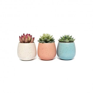 Texture Artificial Plant With Pot